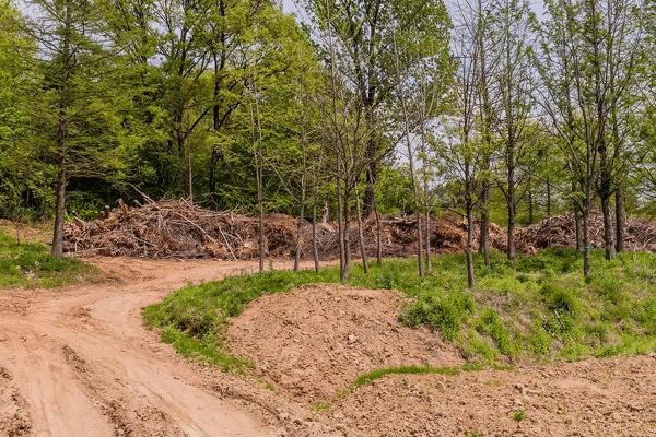 #1 Land Clearing Tree Service Smyrna Ga